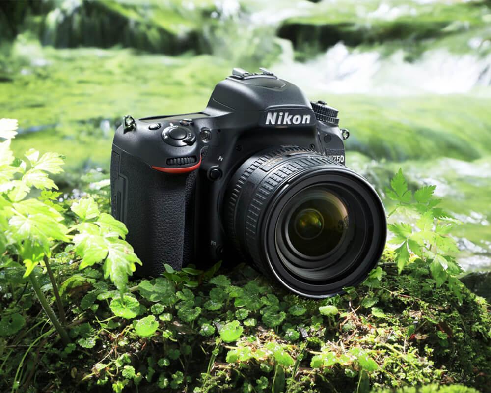 Качественный ремонт фотоаппаратов